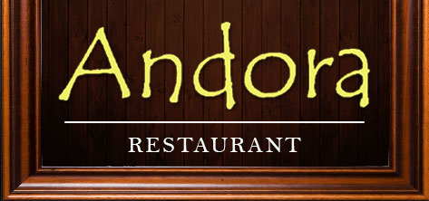 andora-logo-473-222